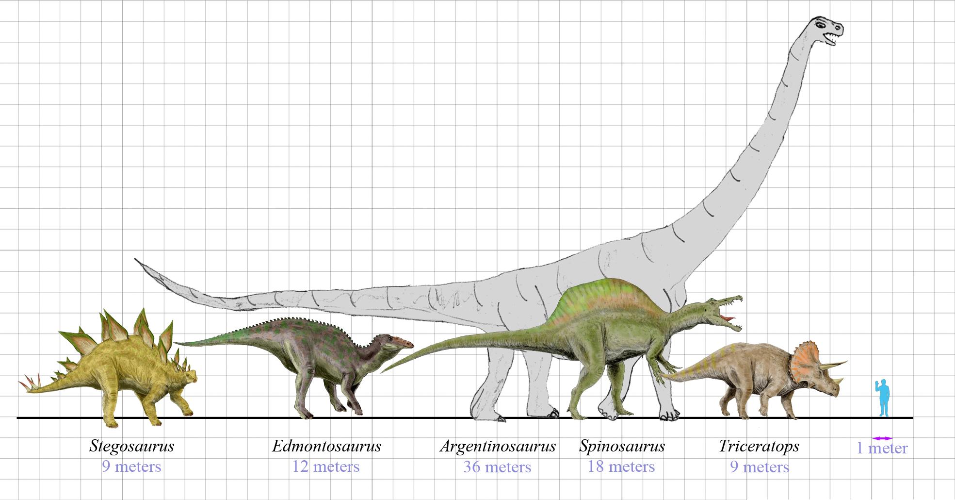 Bekannte Dinosaurier im Größenverhältnis zum Menschen