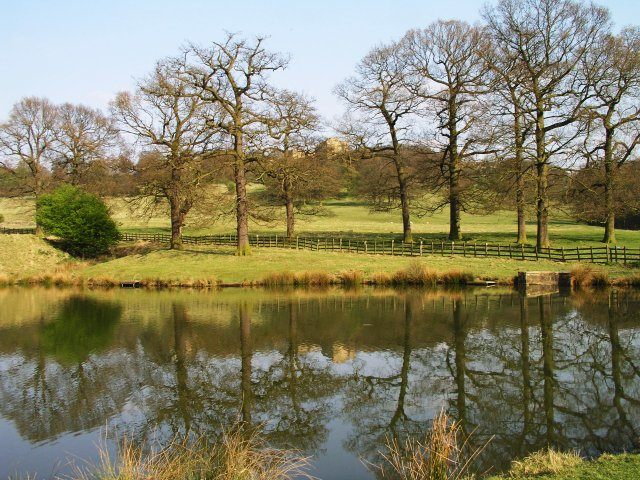 Five Row Ponds, Hardwick - geograph.org.uk - 11158