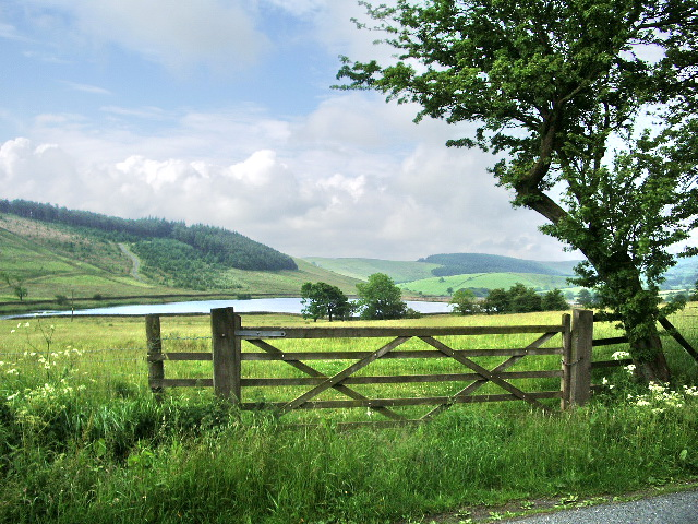 Gate - geograph.org.uk - 476329