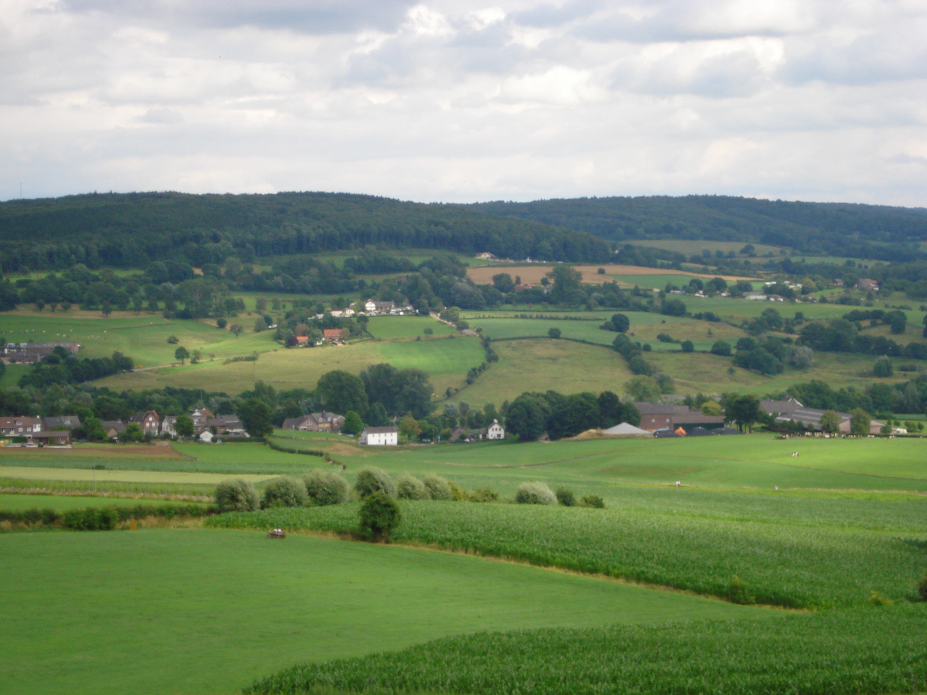 Description Hill landscape Epen.jpg