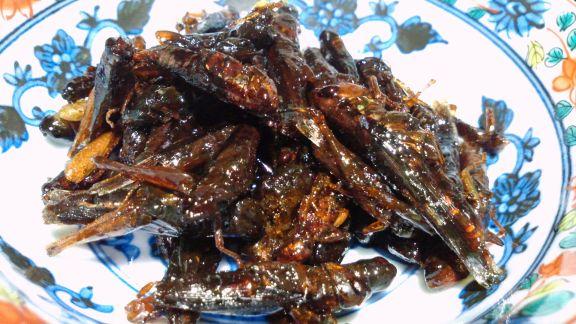 「イナゴの佃煮」の画像検索結果