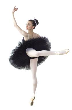Glossario della danza classica wikipedia for Foto classiche