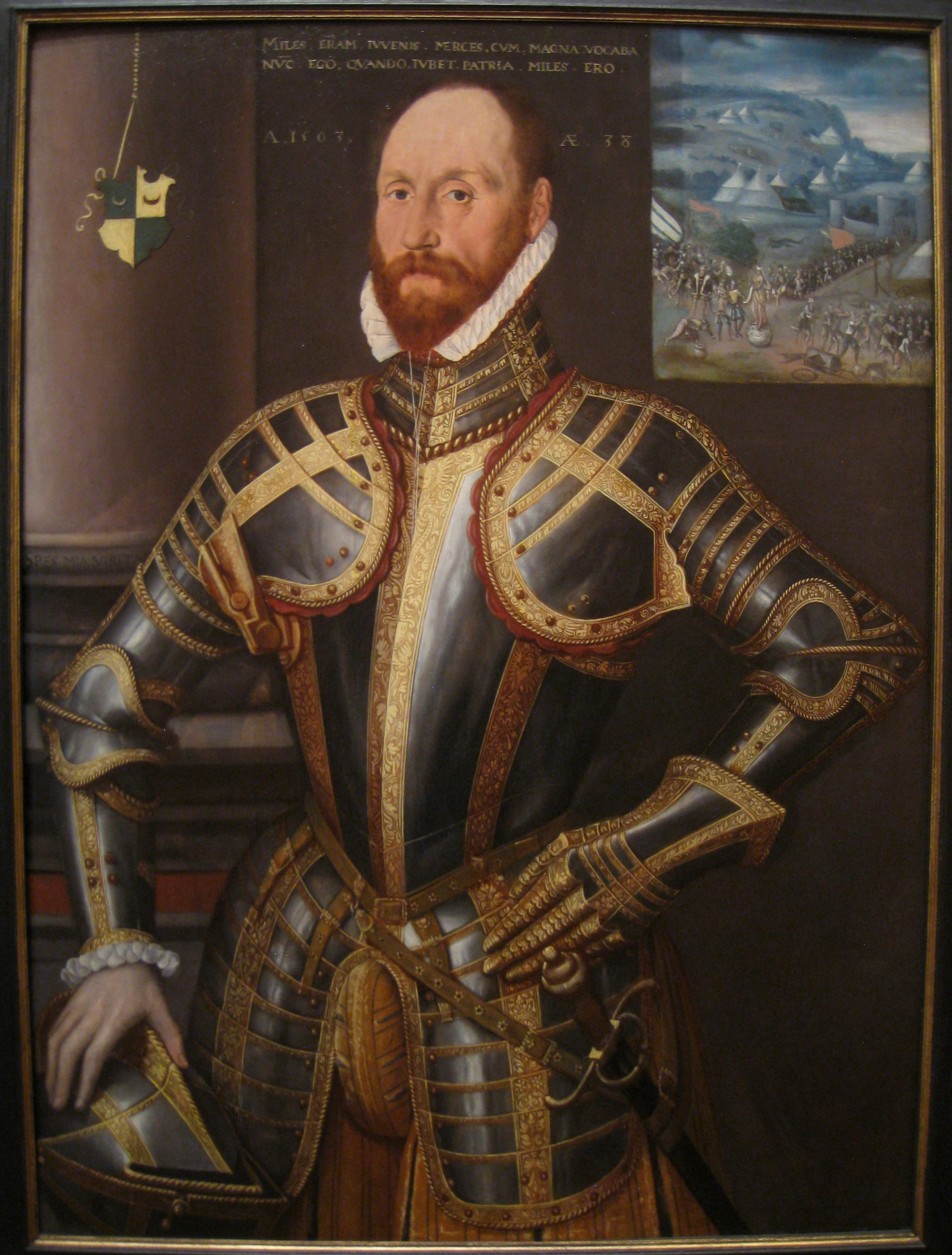 File:John Farnham, Gentleman-Pensioner to Elizabeth I, 1563, by Steven