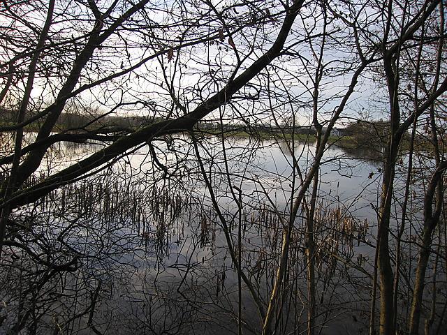 Lake at Maes-llyn, Cors Caron - geograph.org.uk - 1214676