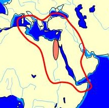 Ancient Egypt Wikipedia - Map of egypt 1300 bc