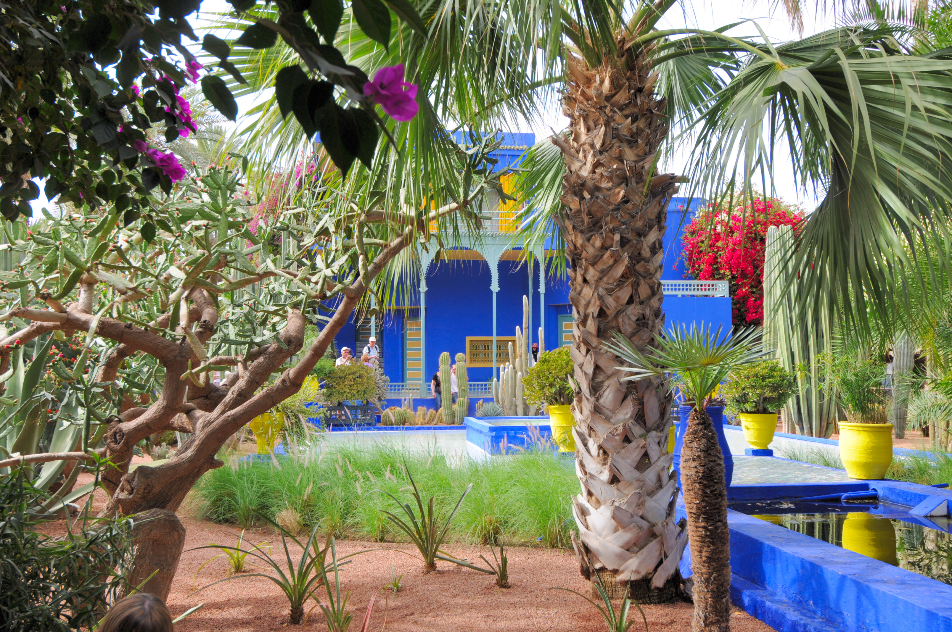 File le jardin des majorelle 533 jpg wikimedia commons for Jardin marrakech