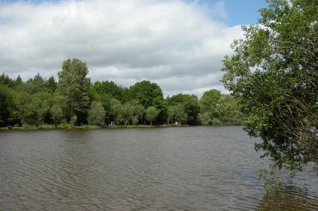 Lodge Pond, Alice Holt Forest - geograph.org.uk - 15121