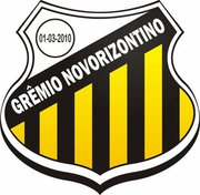 Resultado de imagem para Novorizontino futebol