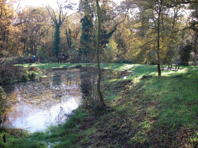 Sheep Water Pond, Hainault Forest - geograph.org.uk - 280577