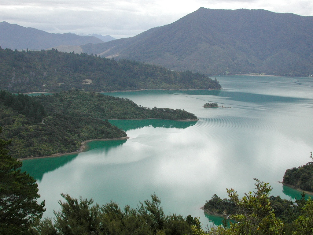Best options for queen charlotte track