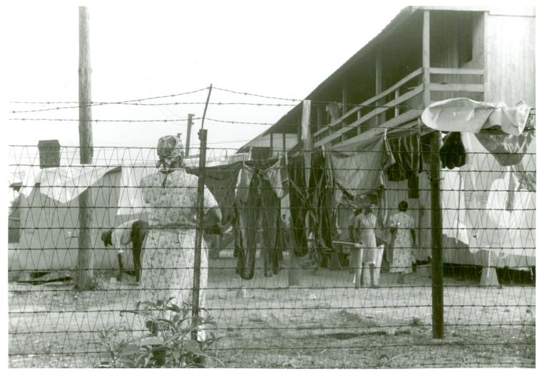 File:The barbed-wire enclosed camp for migratory workers at the Cannon Company of Bridgeville, Delaware.jpg