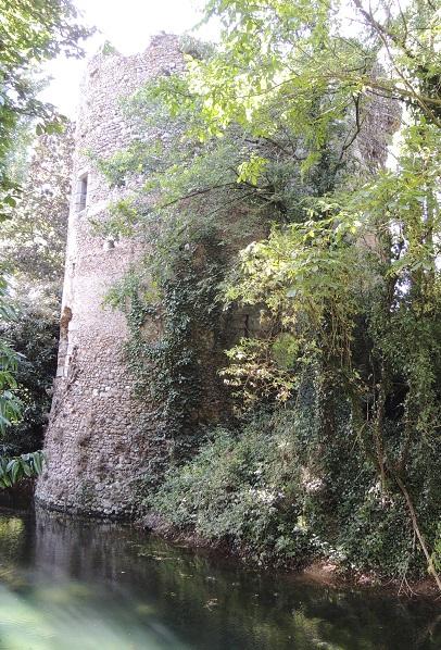 Château de Tremblay-les-Villages, tour ronde avec quelques fenêtres et une meurtrière, plongeant dans les douves en eaux entourée des arbres du bois