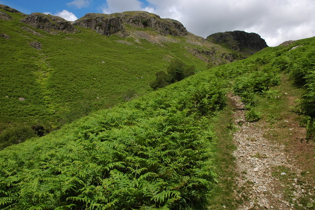 Upper Eskdale above Lingcove Bridge - geograph.org.uk - 526980