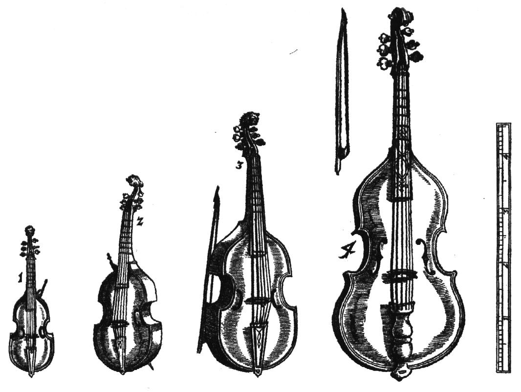 Dimensione degli strumenti ad arco: violino, viola, violoncello e contrabbasso.