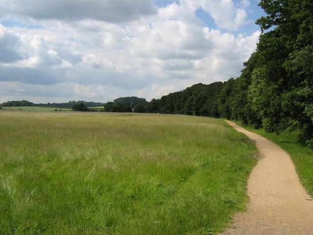 Windsor Great Park - geograph.org.uk - 847350