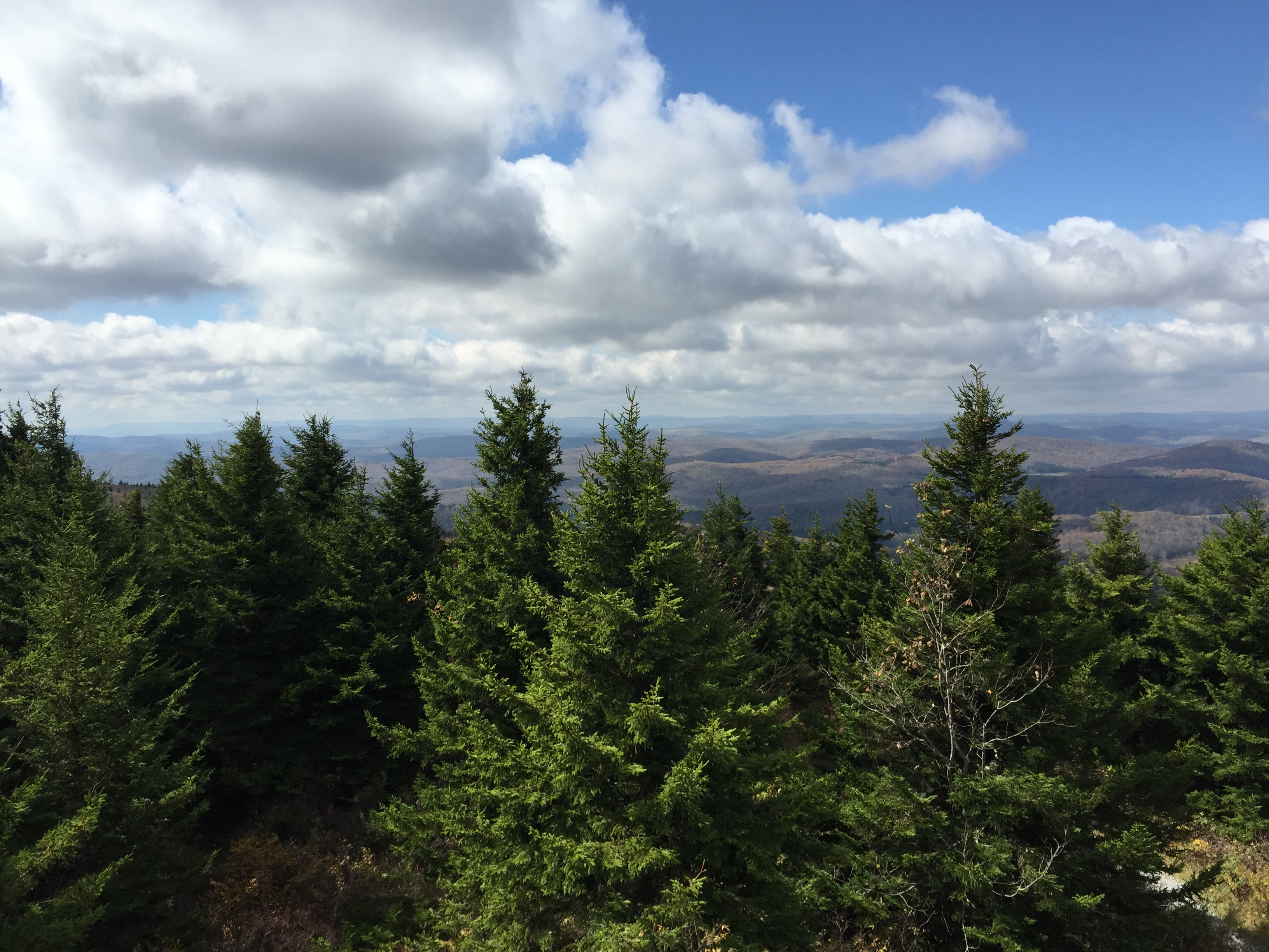 File:2015-10-07 12 57 45 View west across Red Spruce ...