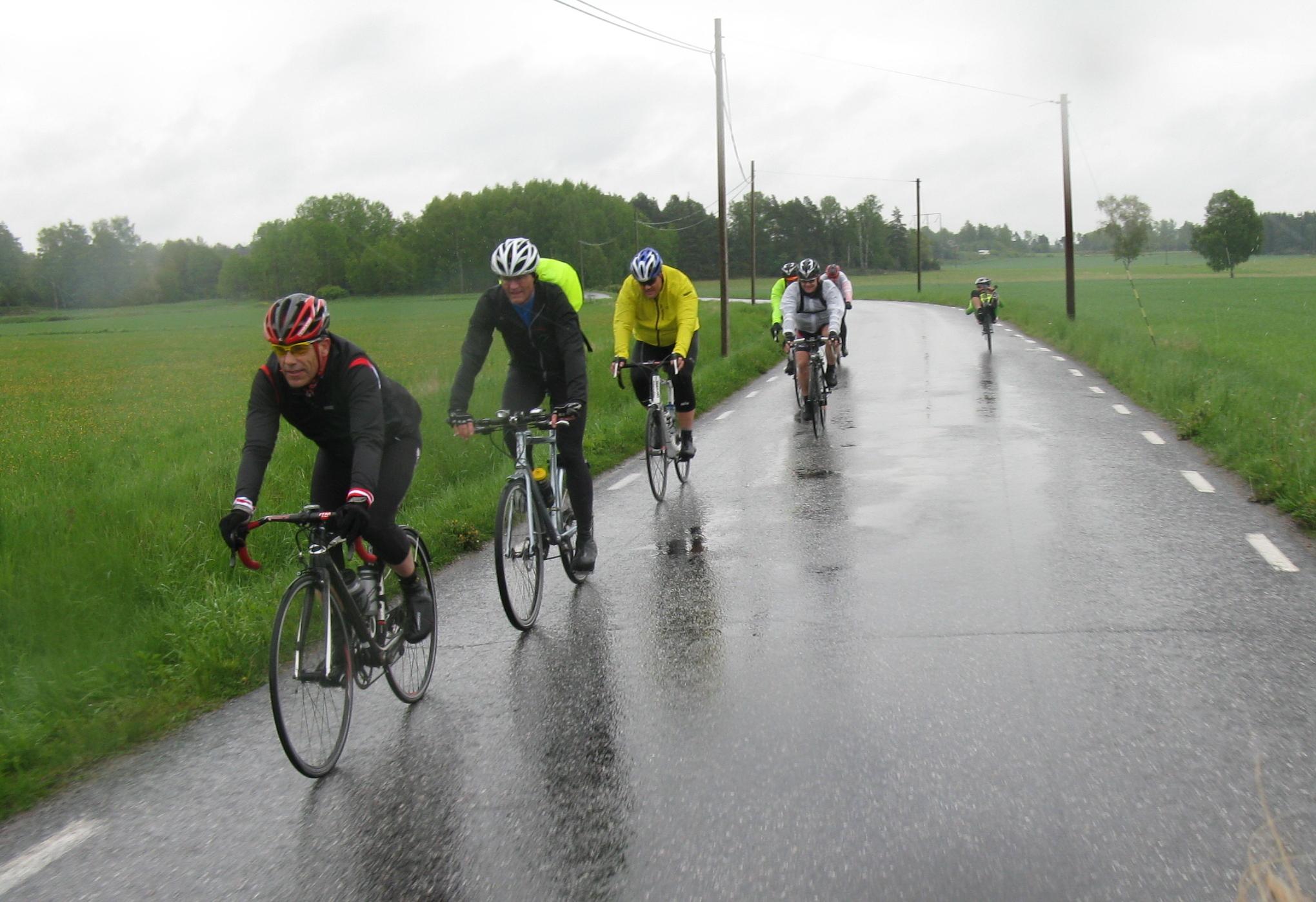 Audax rain