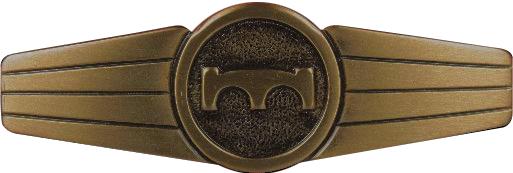 Bundeswehr Tätigkeitsabzeichen Pionier Personal Bronze auf grau handgestickt NEU