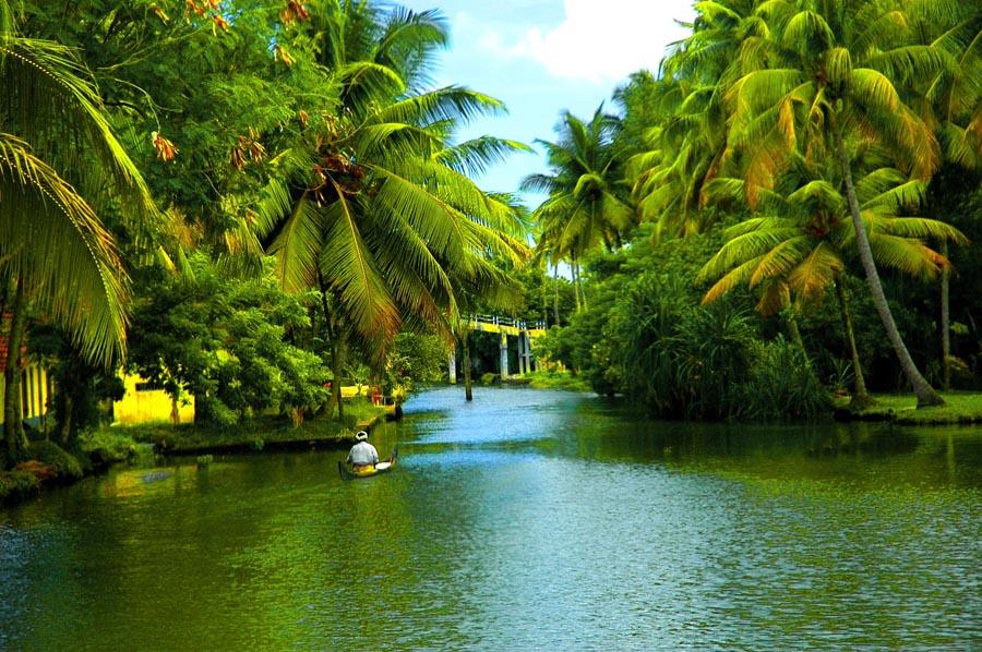 Tropical Beach Resorts Siesta Key Coupon