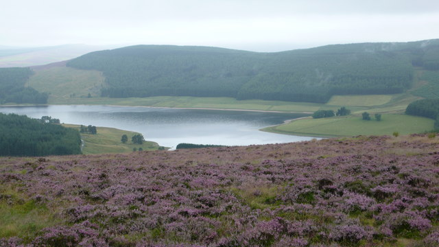 Backwater Reservoir - geograph.org.uk - 910389