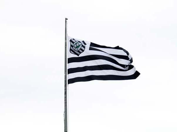 Imagem:Bandeira ffc.jpg