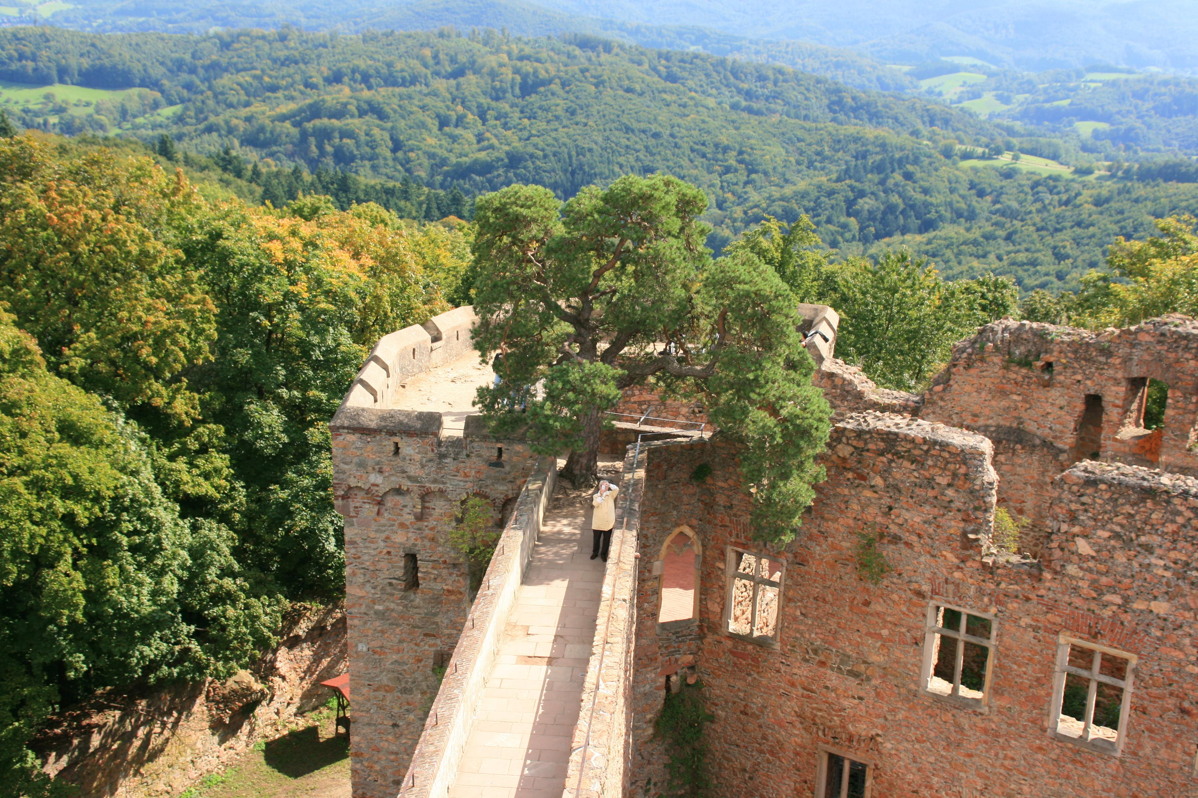 File Bensheim Auerbach Schloss 13 Wikimedia