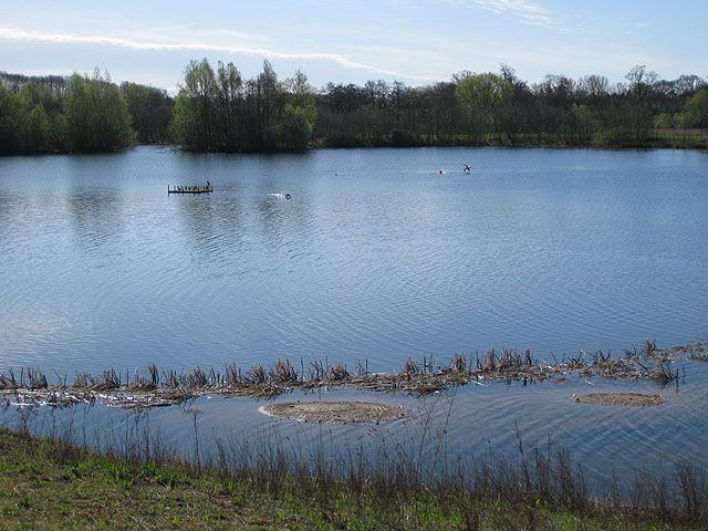 Bodenham Lake - geograph.org.uk - 1248405