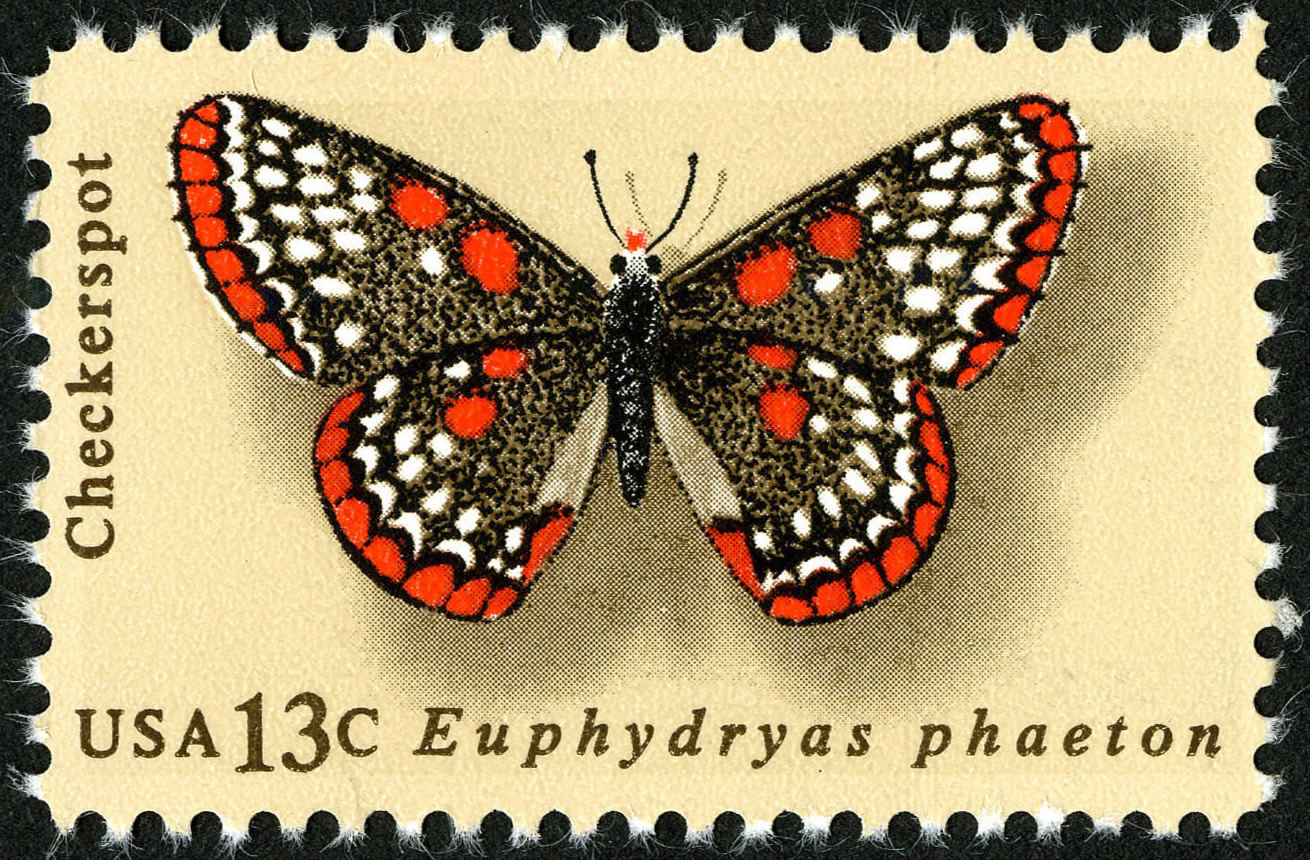 FileButterfly Checkerspot 13c 1977 Issue US Stamp