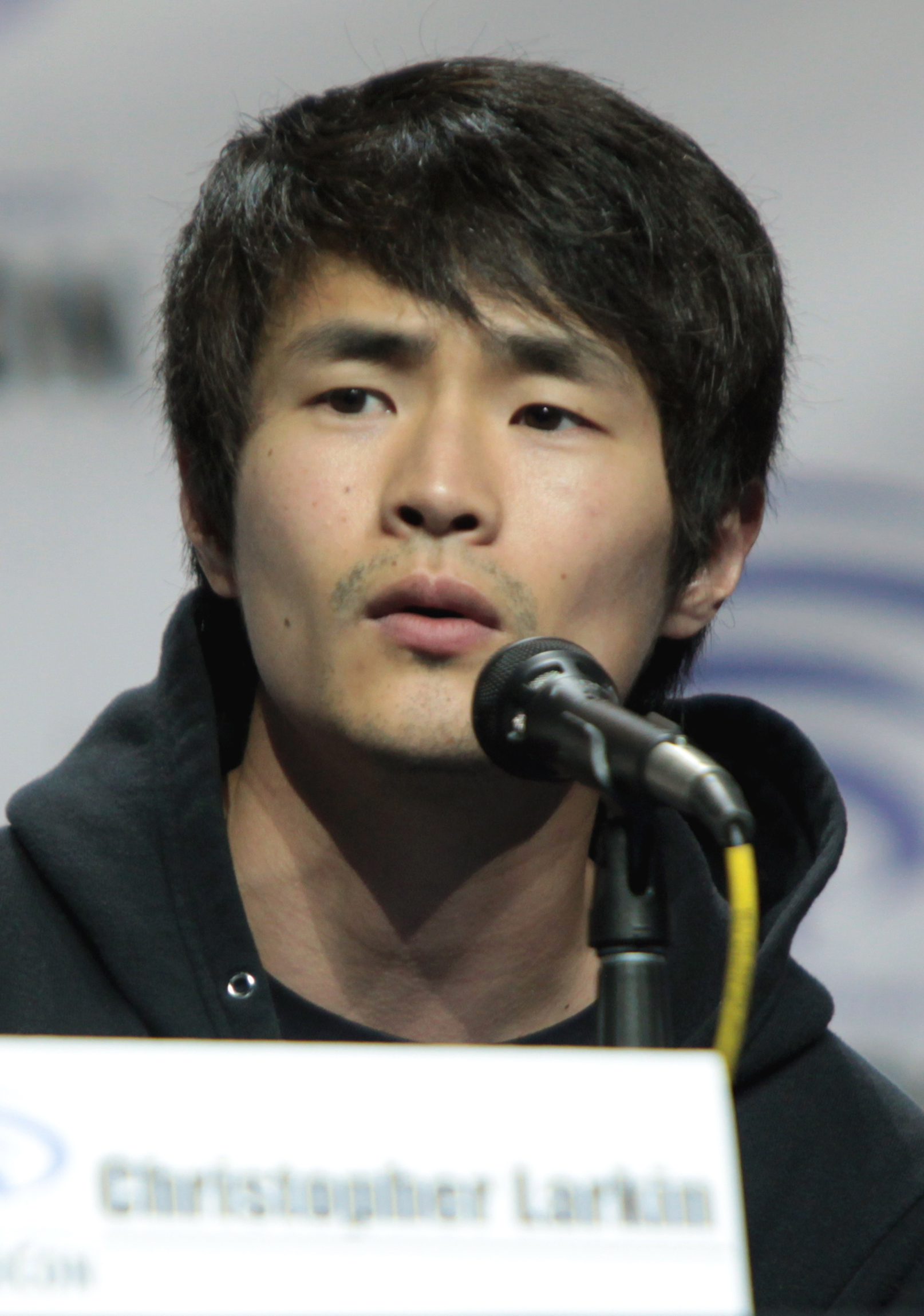 Christopher Larkin Actor Wikipedia