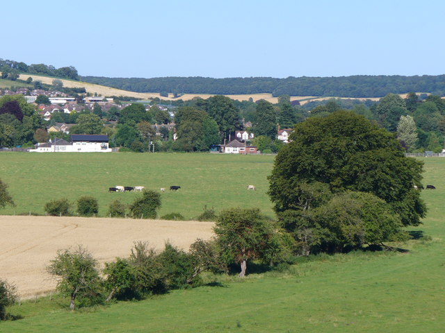 Cock Marsh - geograph.org.uk - 517260
