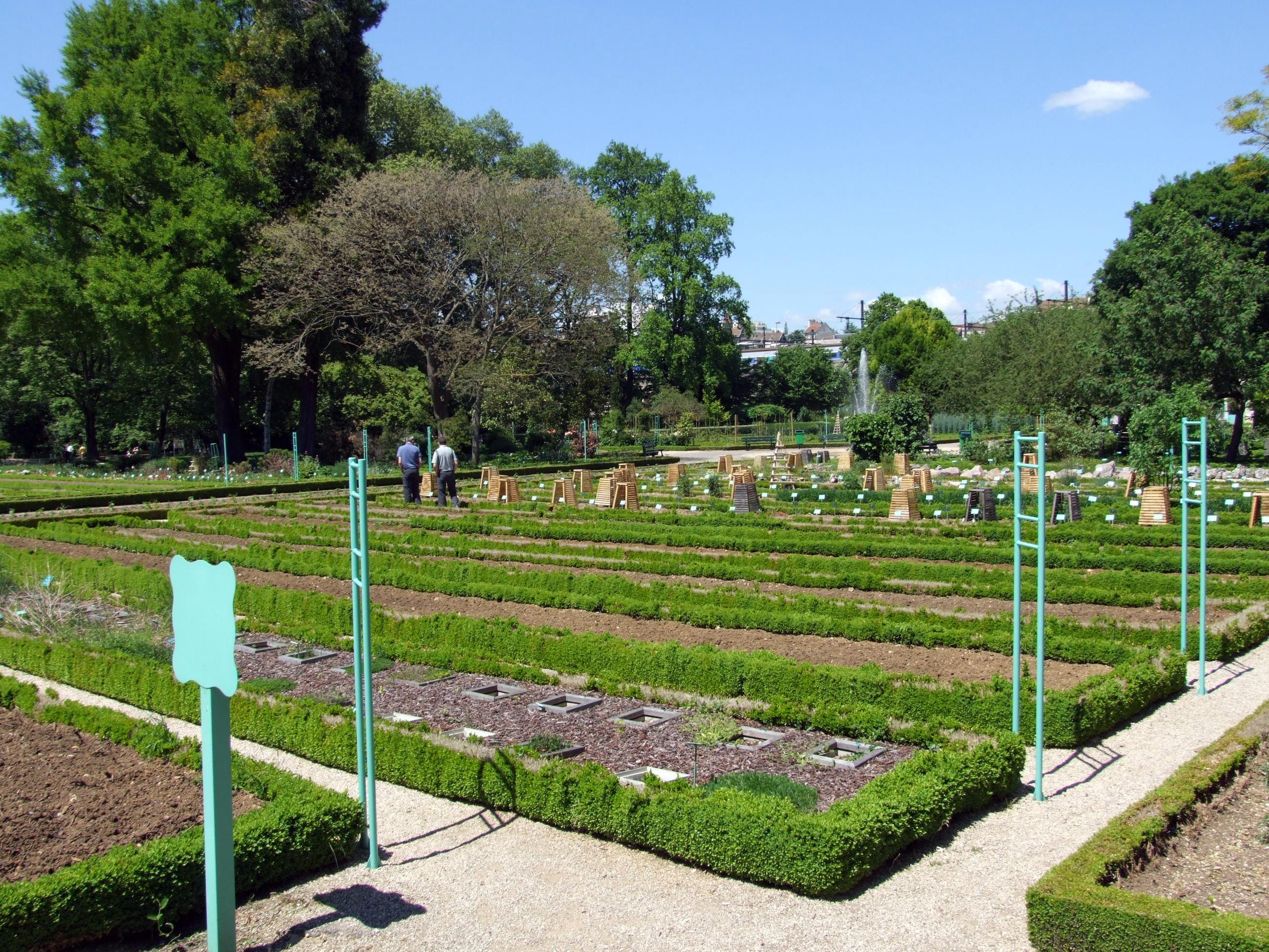 Jardin botanique de l 39 arquebuse wikiwand for Jardin wikipedia