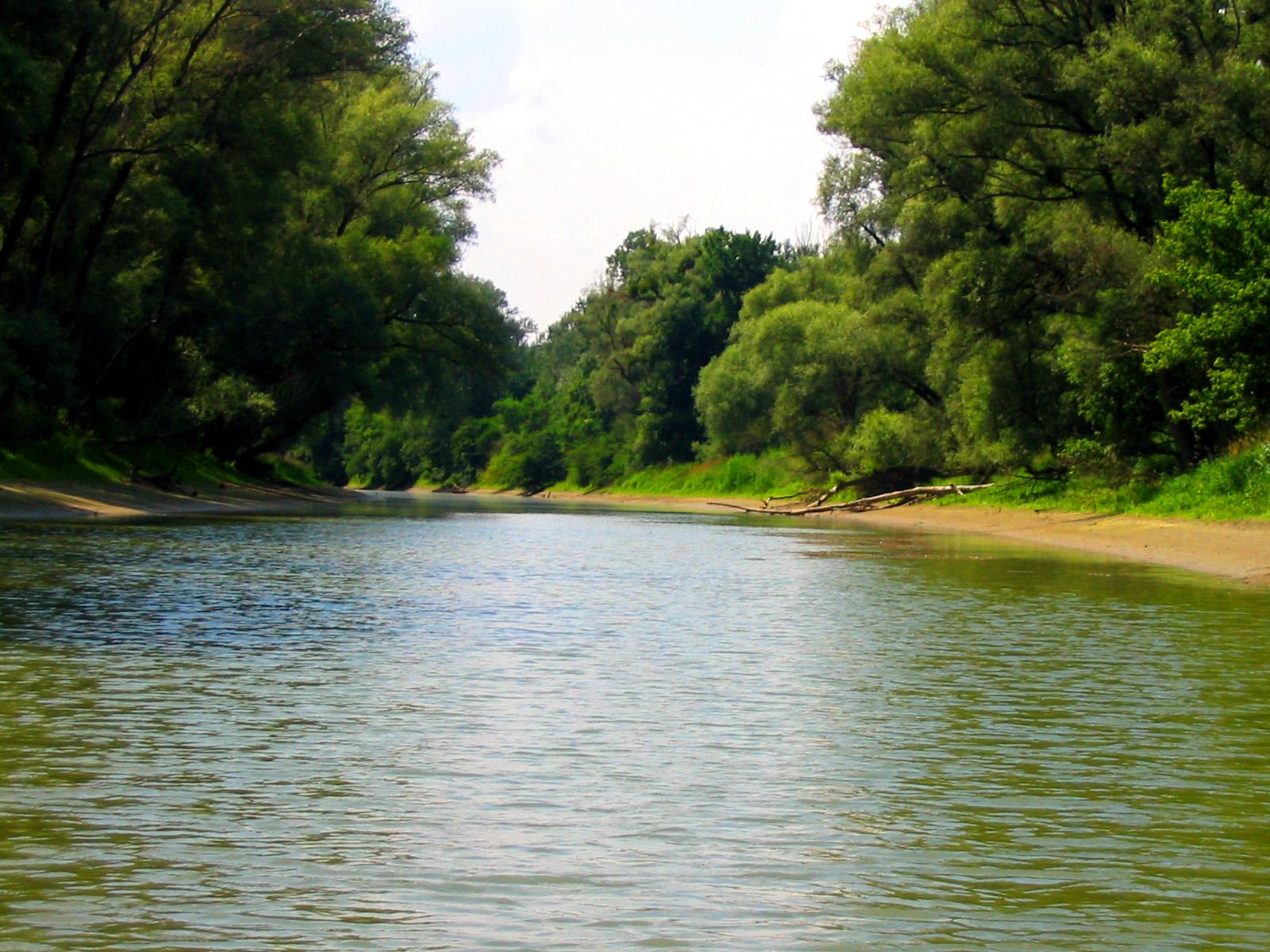Nationalpark Donau-Auen – Wikipedia