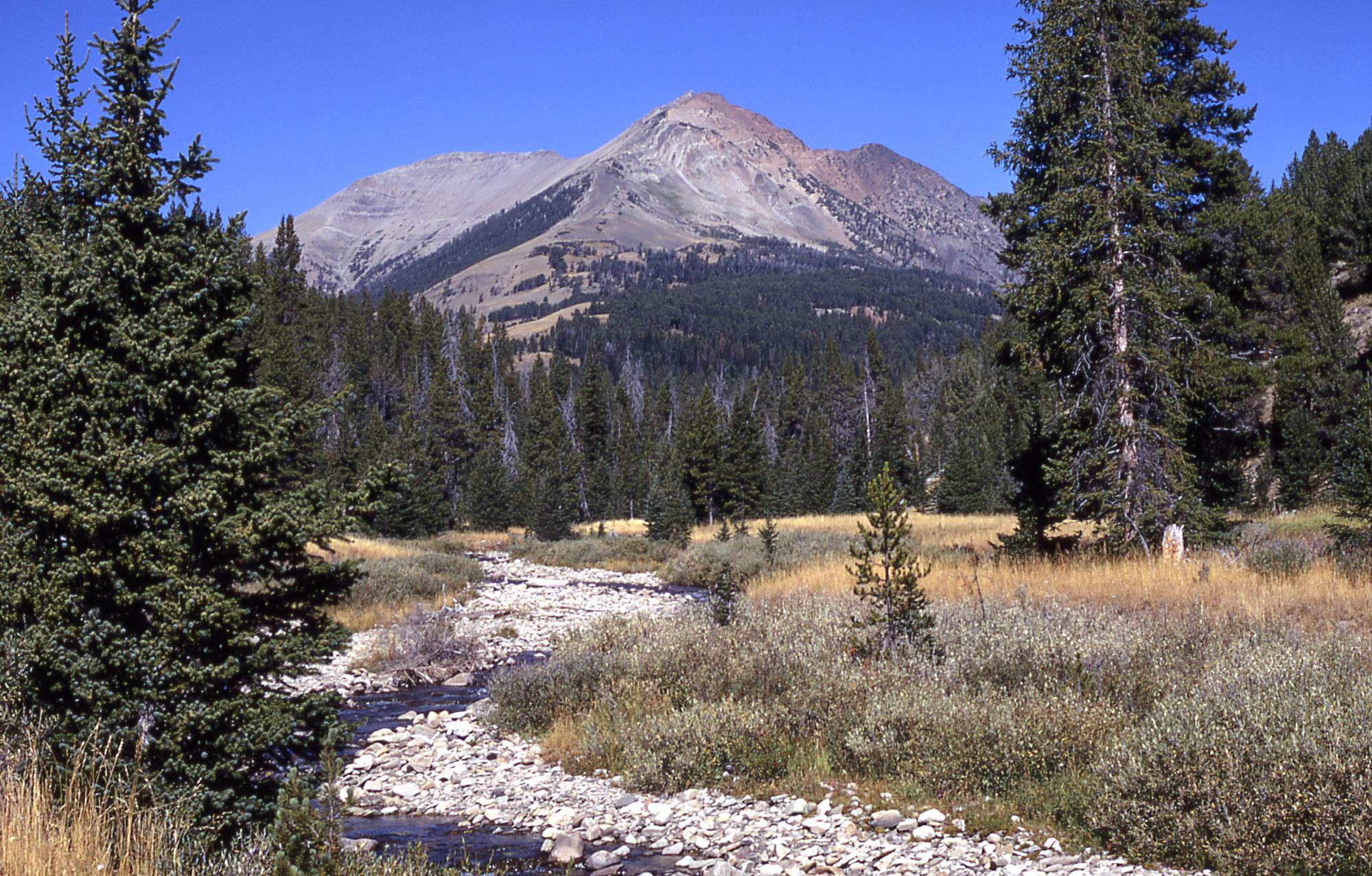 Electric Peak Wikipedia