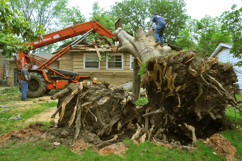 Oak Property Management Carrickfergus