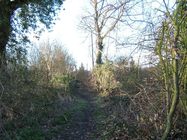 Footpath to Hockley Wood - geograph.org.uk - 129969