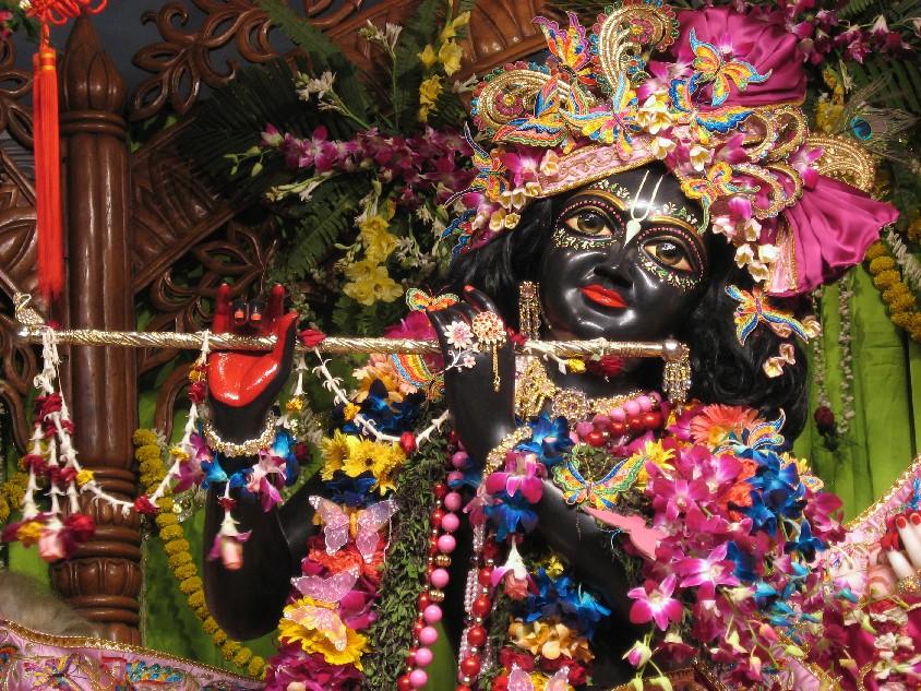 Krishna ISKCON Mayapur 2008.jpg