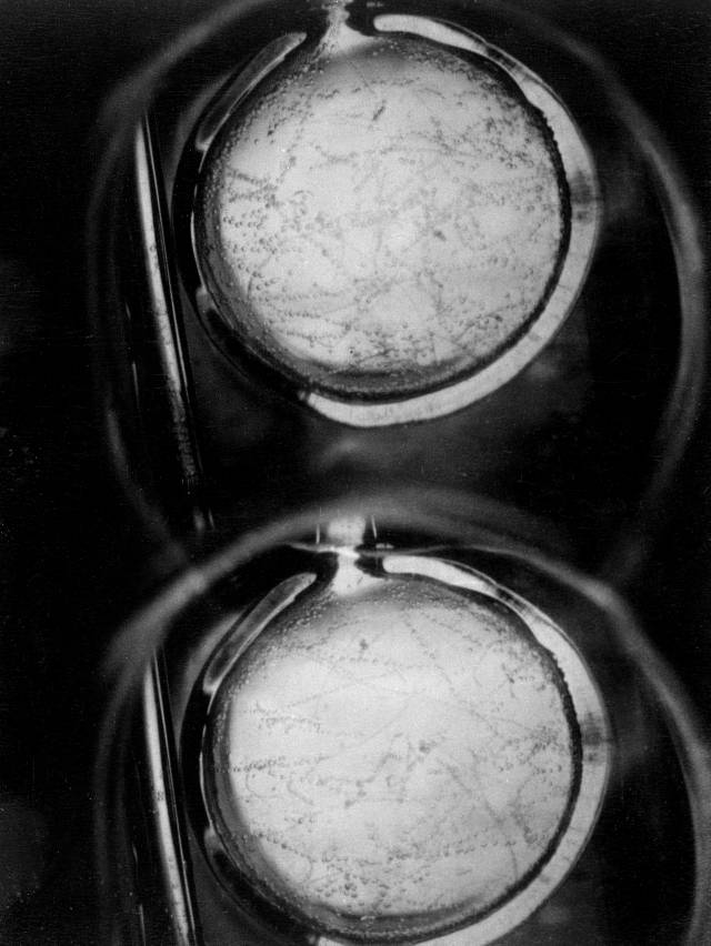 Liquid hydrogen bubblechamber.jpg