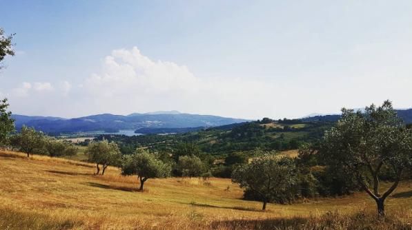 Veduta del Lago di Bilancino da Località Apparita (Via di Panna, Galliano di Mugello)
