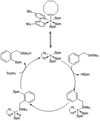 Mechanism of hydrosilane