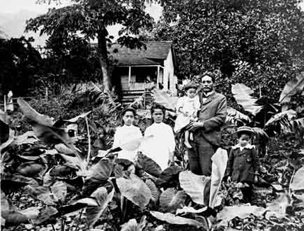 a history of hawaii and the native hawaiians Modern hawai'i, like its colonial overlord, the united states of america, is a settler society our hawaiian people, now but a remnant of the nearly one million natives present at contact with the west in the 18th century, live.