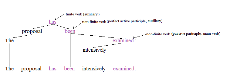 Nonfinite Verb Wikipedia