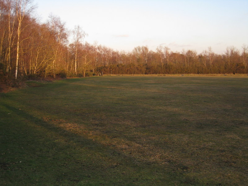 Northern end of Silchester green - geograph.org.uk - 1739606
