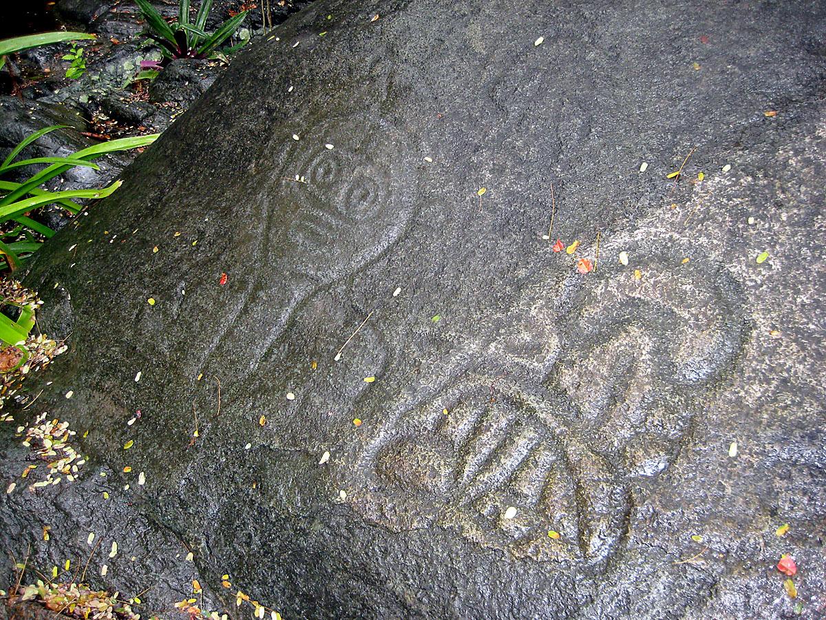 Reef Bay Trail Petroglyphs Wikipedia
