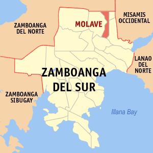 Ph_locator_zamboanga_del_sur_molave - Show Posts - lakandula