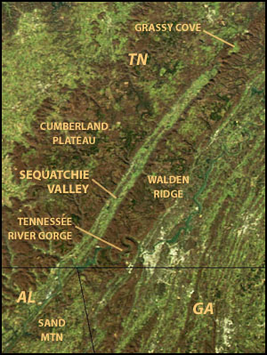 NASA satellite image showing Tennessee's Sequatchie Valley and the Cumberland Plateau (image source: Aqua satellite, MODIS sensor).