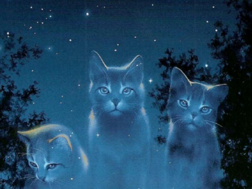 File:StarClan Cats Warrior Cats.jpg - Wikimedia Commons