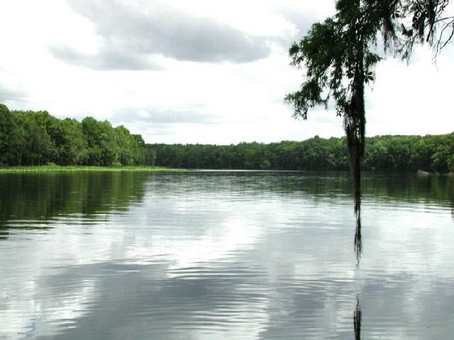 Description suwannee river