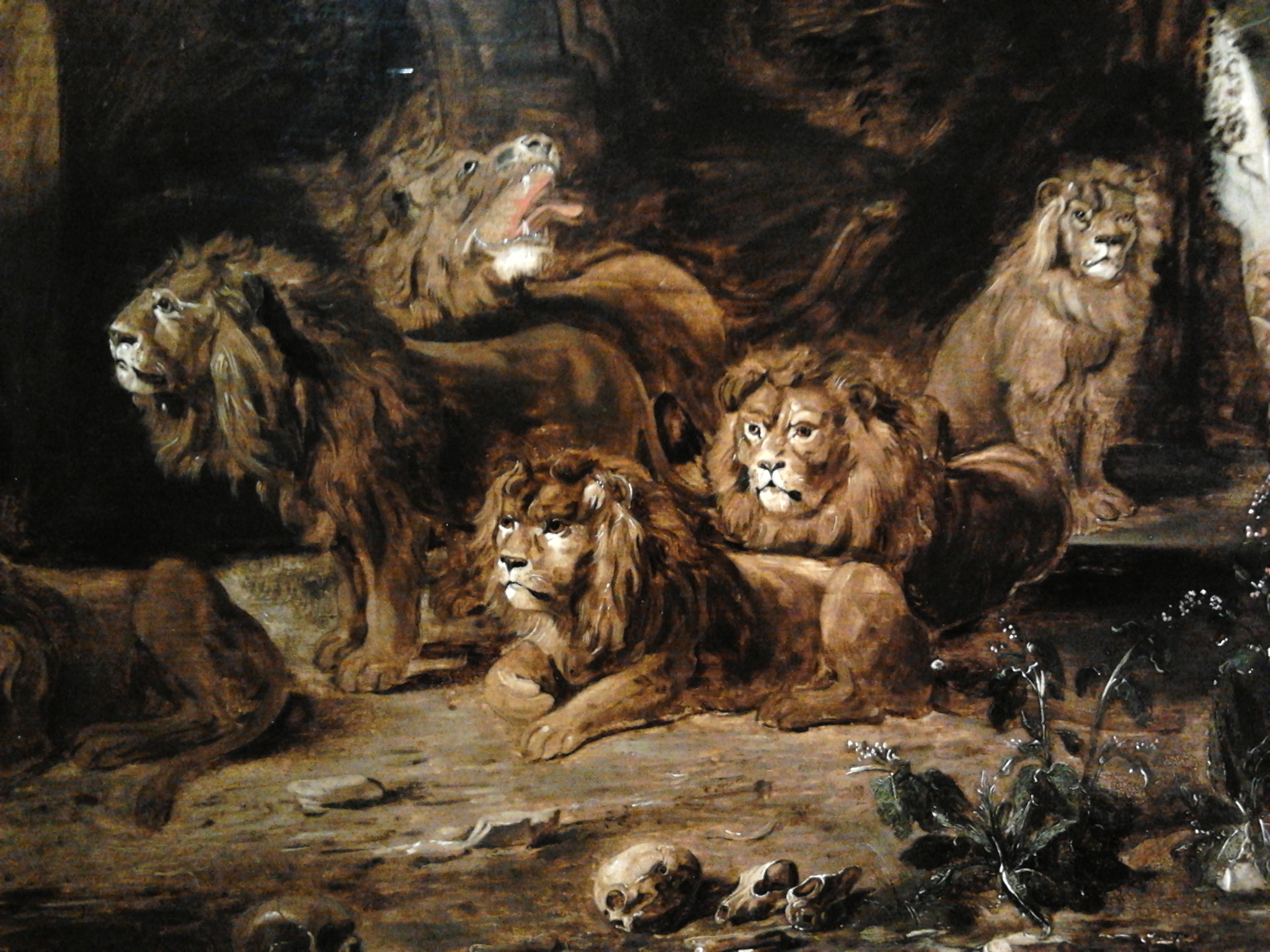 the bereavement of the lion keeper essay • when the lion feeds amusing essay on off-the-wall questions for discussion appearing at backs of novels to books for writers and editors great search.