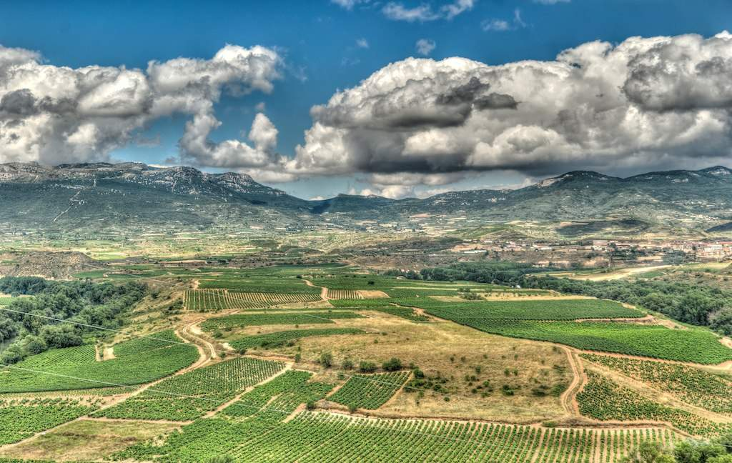 Blick über La Rioja von Briones  © Emilio García from Parla, Spain (Viñedos) [CC BY-SA 2.0 (https://creativecommons.org/licenses/by-sa/2.0) oder CC BY-SA 2.0 (https://creativecommons.org/licenses/by-sa/2.0)], via Wikimedia Commons