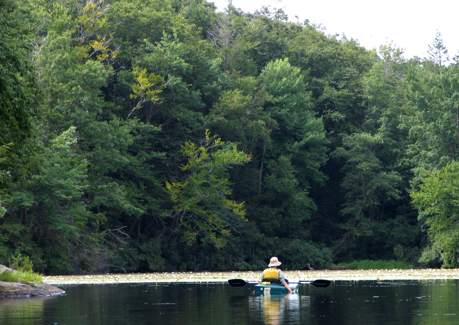 Wawayanda State Park - Lakes In New Jersey